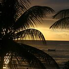 Tobago Sunset by Sauropod8
