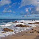 Pacific Grove Seascape I by JimPavelle