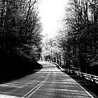 The Road To The Left by AnatomyOfDecay