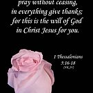 1 Thessalonians 5:16-8 by Deborah McLain