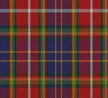 01655 Stephane Beguinot Tartan Fabric Print Iphone Case by Detnecs2013