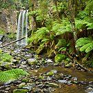 Hopetoun Falls by Will Hore-Lacy