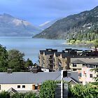 Overlooking Queenstown by Larry Davis