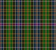 01674 Bhutan District Tartan Fabric Print Iphone Case by Detnecs2013