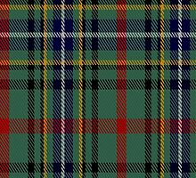 01683 Bisset Clan/Family Tartan Fabric Print Iphone Case by Detnecs2013