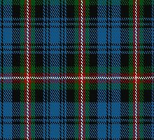 01696 Blanton Dress Clan/Family Tartan Fabric Print Iphone Case by Detnecs2013