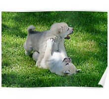 I Have Caught Him Mom !! Poster