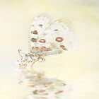 Delicate | Greeting Card by beautifulcards