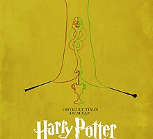 Harry Potter and the Goblet of Fire by Harry Bradley