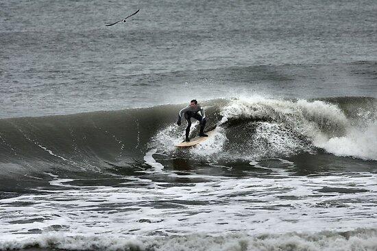 WIngs and Waves by JGetsinger