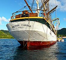 """SY """"Picton Castle"""" 3 by globeboater"""