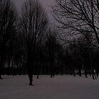 Winter Woodland by devil001