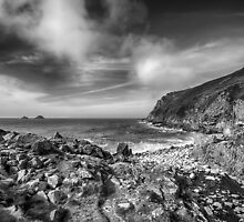 Cot Valley Porth Nanven 3 Black and White by Chris Thaxter