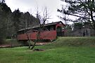 A Green Christmas at the Buckhorn Covered Bridge by Gene Walls