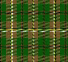 01727 Braemar House Tartan Fabric Print Iphone Case by Detnecs2013