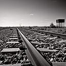 Outback Rails - Olary - South Australia by Norman Repacholi