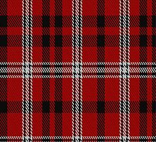 01738 Brice Tartan Fabric Print Iphone Case by Detnecs2013