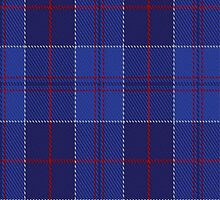 01744 British American School of Charlotte Tartan Fabric Print Iphone Case by Detnecs2013