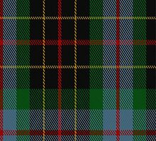 01767 Brodie Hunting Clan/Family Tartan Fabric Print Iphone Case by Detnecs2013