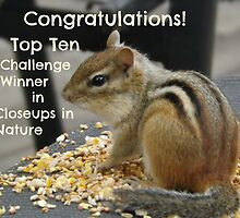 Top Ten challenge winner banner by Jeanette Muhr