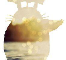 Bokeh Totoro by dnguye7