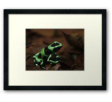 Commando Frog Framed Print