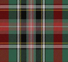 01787 Bruce of Kinnaird Clan/Family Tartan Fabric Print Iphone Case by Detnecs2013