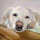 Dreamy Eyes Labrador Retriever falling asleep by Nancy Daleo