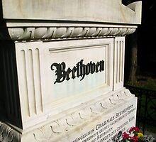 Beethoven Zentralfriedhof by Stephen Oravec