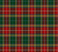 01802 Buchanan #3 Tartan Fabric Print Iphone Case by Detnecs2013
