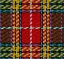 01803 Buchanan #4 Tartan Fabric Print Iphone Case by Detnecs2013