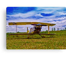 R/C Airplane 2 Canvas Print