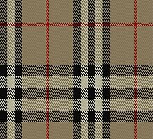 01827 Burberry Tartan Fabric Print Iphone Case by Detnecs2013
