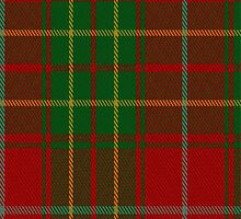 01832 Burnett Tartan Fabric Print Iphone Case by Detnecs2013