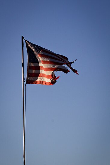 Old Glory by LawrencePhoto