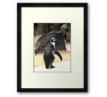Penguin Shot Framed Print