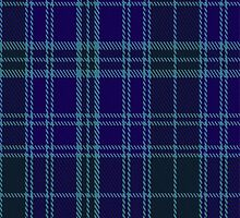 01845 Caledonian Airways Tartan Fabric Print Iphone Case by Detnecs2013
