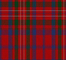 01861 Cameron of Locheil Clan/Family Tartan Fabric Print Iphone Case by Detnecs2013