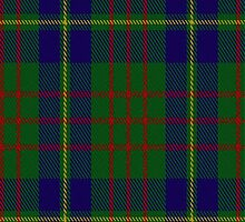 01866 Cameron of Locheil (Hunting) Clan/Family Tartan Fabric Print Iphone Case by Detnecs2013
