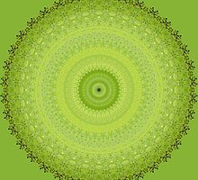 Maidenhair Fern Mandala by haymelter