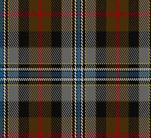 01872 Campbell Hunting Fashion Tartan Fabric Print Iphone Case by Detnecs2013