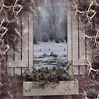 Winter Dream by Debra James Percival