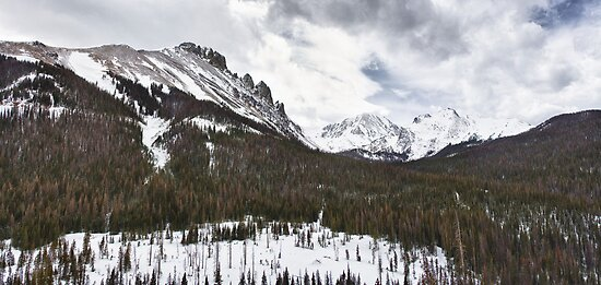Never Summer Wilderness Area Panorama by Bo Insogna