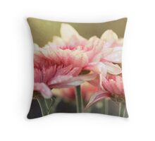 No matter the shadows, your presence is like sunlight on my face. Throw Pillow