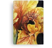 """Dragon Siesta"" Canvas Print"
