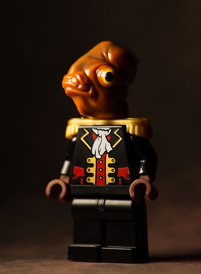 Admiral of the Fleet by Mike Stimpson