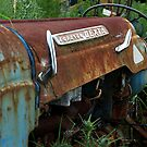The old tractor amongst the weeds......! by Roy  Massicks