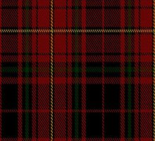 01909 Canterbury Fashion Tartan Fabric Print Iphone Case by Detnecs2013