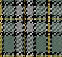 01911 Cape Breton (yellow stripes) District Tartan Fabric Print Iphone Case by Detnecs2013