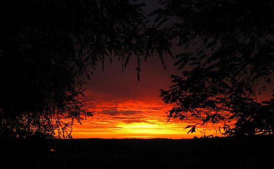 'Fire in the sky! looking across the paddocks. Adelaide Hills. by Rita Blom